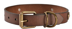 Shotgun Shell Dog Collar - XS-XL, , hi-res