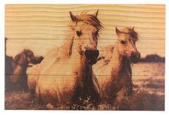 BB Ranch Wooden Sepia Toned Horses Wall Decor, , hi-res