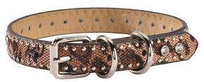 Studded Leopard Print Dog Collar - S-XL, Brown, hi-res
