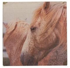 BB Ranch Rustic Horse Canvas Wall Art, No Color, hi-res