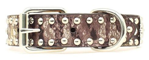 Mossy Oak Concho Dog Collar - S-XL, Camouflage, hi-res
